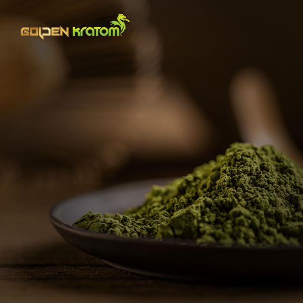 portfolio senjani website golden kratom
